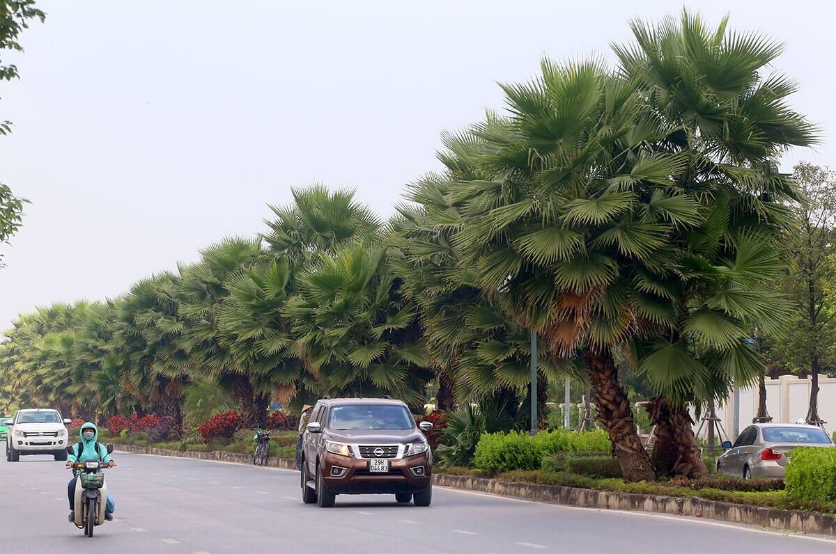 Dọc theo trục dự án là đường Chu Huy Mân kết nối từ khu đô thị đến cầu Vĩnh Tuy.