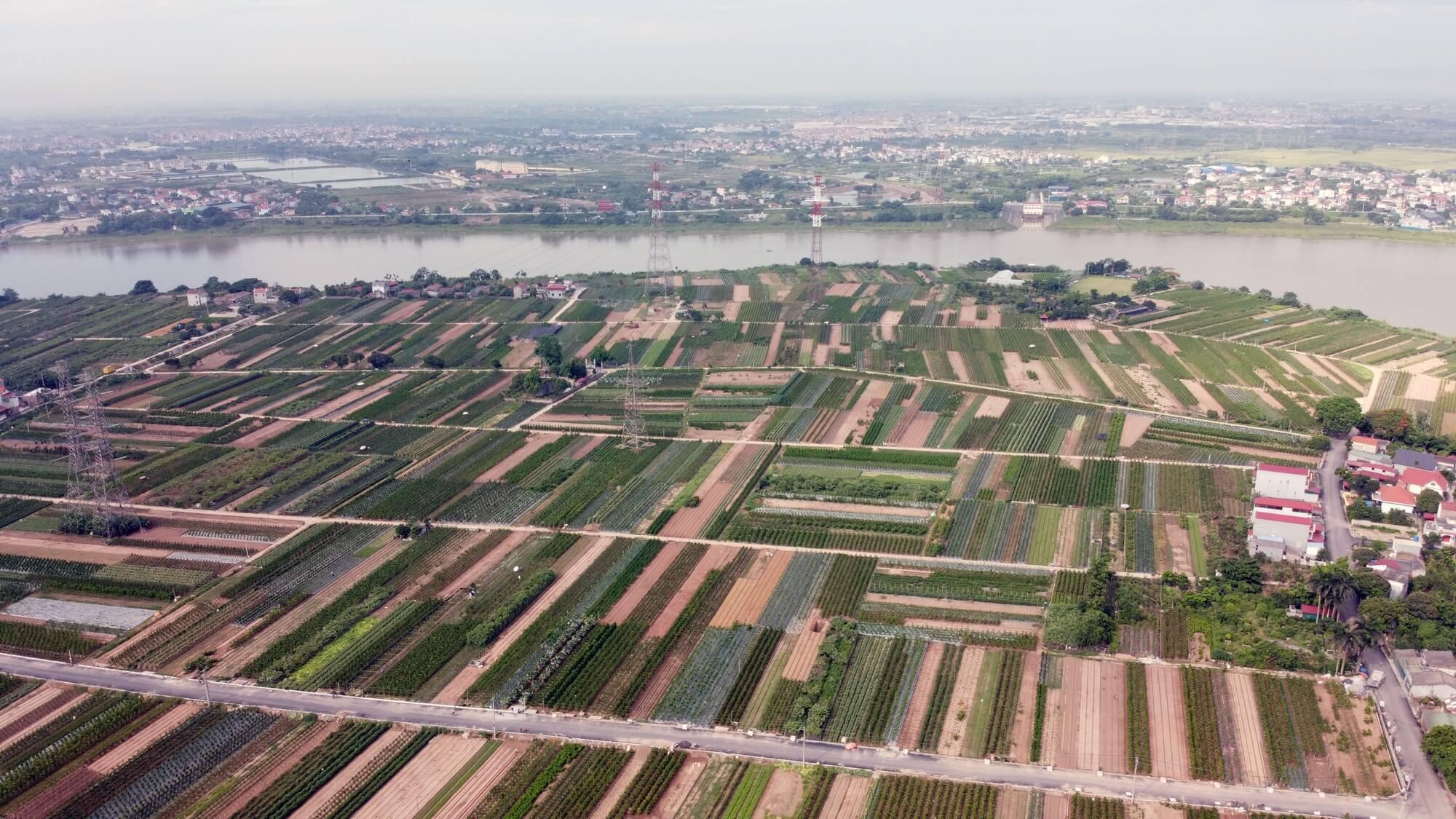 Trên địa bàn Văn Giang, tuyến cầu, đường chạy gần với đường dây 500kv.