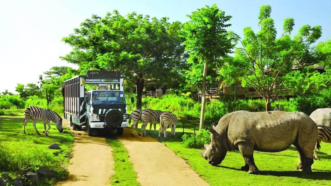 """Khách du lịch sẽ được """"tận mắt tay sờ"""" vào các loài động vật hoang dã."""