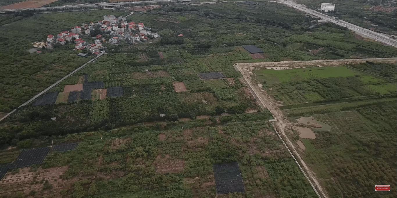 Khu vực vãn là một bãi đất trống rộng lớn.