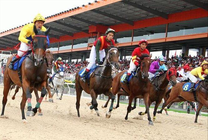 Trường đua ngựa Sóc Sơn là một trong số các dự án lớn của khu vực.